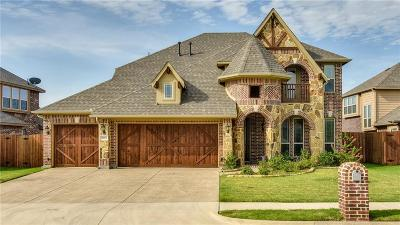 Denton Single Family Home For Sale: 5001 Parkplace Drive