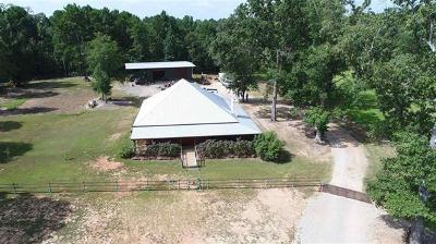 Kilgore Single Family Home For Sale: 13945 Cr 288 N