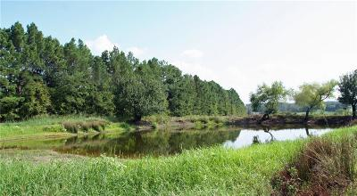 Athens Residential Lots & Land For Sale: 4563 Grand View Drive