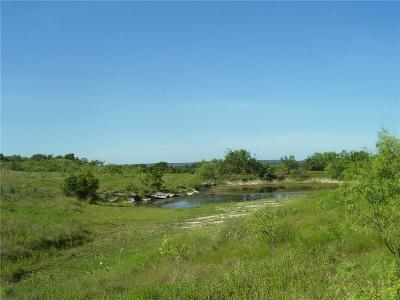 Comanche Farm & Ranch For Sale: 408 Highway 16