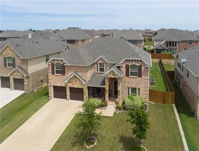 Plano Single Family Home For Sale: 3529 Hutch Drive