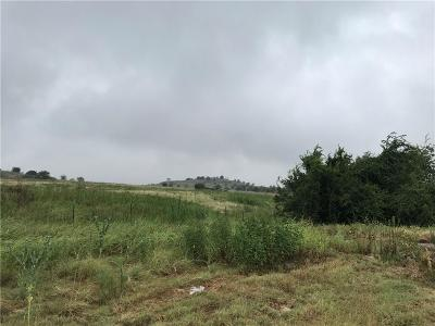 Weatherford Residential Lots & Land For Sale: 491 Canyon West Drive