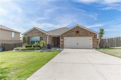 Wise County Single Family Home For Sale: 107 Sky Trail