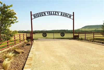Stephenville Farm & Ranch For Sale: 21905 Us Hwy 67 Highway