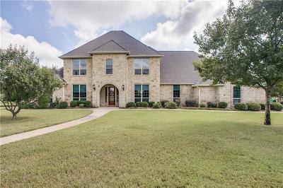 Aledo Single Family Home For Sale: 217 Terrace Bluff Lane