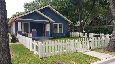 Grapevine Single Family Home For Sale: 228 E Franklin Street