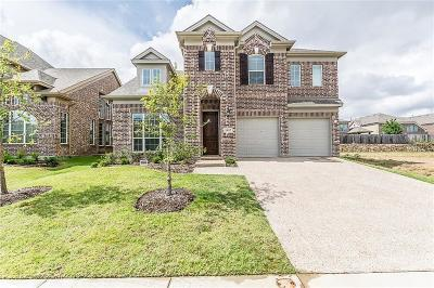 Little Elm Single Family Home For Sale: 14117 Winter Hill Drive