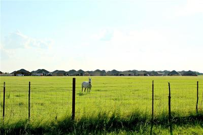 Hood County Residential Lots & Land For Sale: 904 Tolar Highway