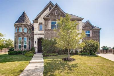 Flower Mound Single Family Home For Sale: 3520 Blue Moon Street