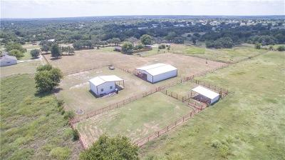Weatherford Farm & Ranch For Sale: 737 Green Branch Road