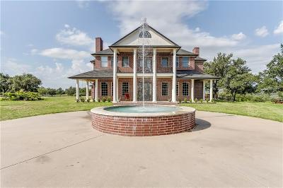 Weatherford Single Family Home For Sale: 257 Carter Ranch Trail
