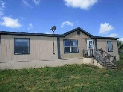 Stephenville Single Family Home For Sale: 1667 Wild Horse Lane