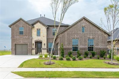 Prosper Single Family Home For Sale: 2941 Cannon Drive
