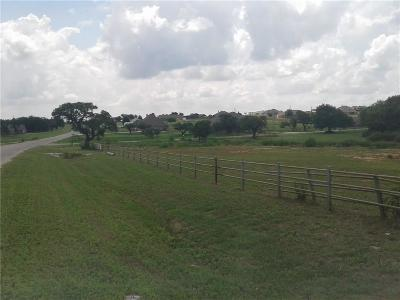 Weatherford Residential Lots & Land For Sale: 100 Churchill Circle