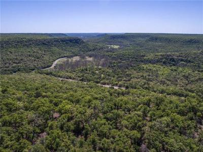 Palo Pinto County Farm & Ranch For Sale: 3349 N Lakeview Drive