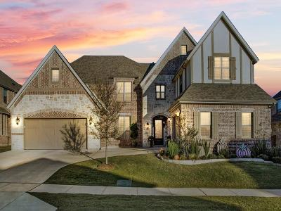 Flower Mound Single Family Home For Sale: 6708 Oak Knoll Road