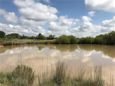 Eastland County Farm & Ranch For Sale: 1303 County Road 242