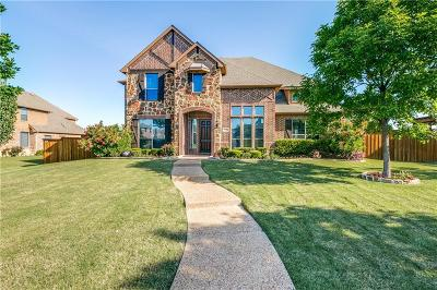 Sunnyvale Single Family Home For Sale: 385 Redstone Drive