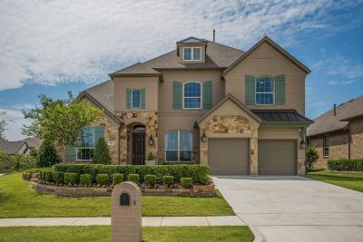 Mckinney Single Family Home For Sale: 901 Navasota Trail