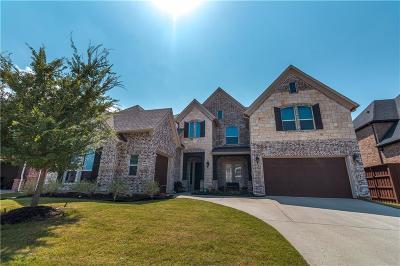 Frisco Single Family Home For Sale: 6745 Calihan Court