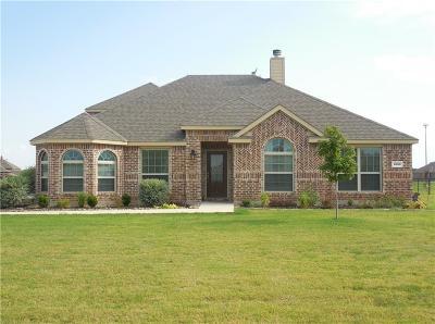 Nevada Single Family Home For Sale: 1033 Harmony Circle
