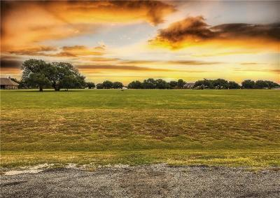 Mineral Wells TX Residential Lots & Land For Sale: $79,900