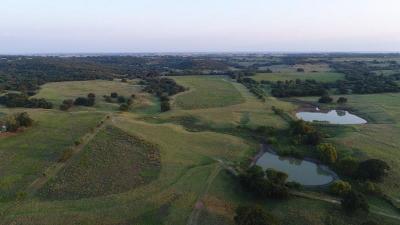Erath County Farm & Ranch For Sale: 12118 N Fm 1189