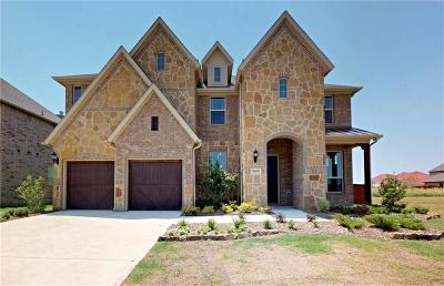 Frisco Single Family Home For Sale: 10665 Torino Drive