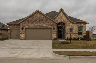Collin County Single Family Home For Sale: 2602 Thayne Drive