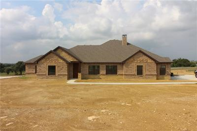 Springtown Single Family Home For Sale: 150 Carter Road