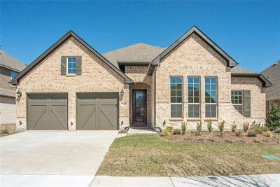 Little Elm Single Family Home For Sale: 745 Sandbox Drive