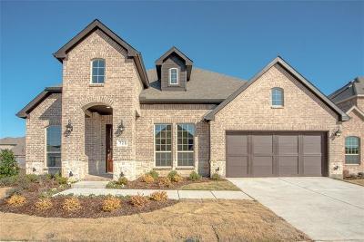Little Elm Single Family Home For Sale: 721 Sandbox Drive