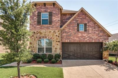 Lewisville Single Family Home For Sale: 225 Vagon Castle Lane