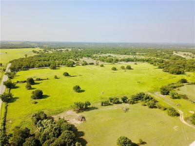 Parker County Farm & Ranch For Sale: Advance Road