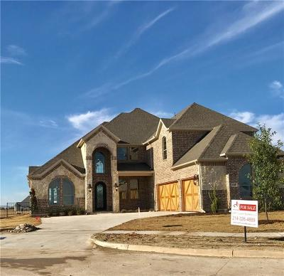 Gunter Single Family Home For Sale: 1169 Stonebridge Pass