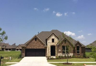 Little Elm Single Family Home For Sale: 825 Boardwalk Way