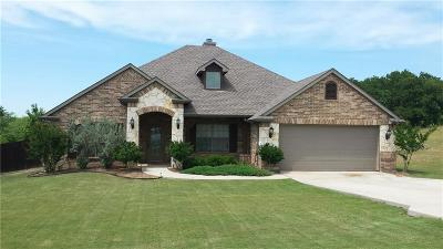 Wise County Single Family Home For Sale: 109 Cactus Canyon Drive