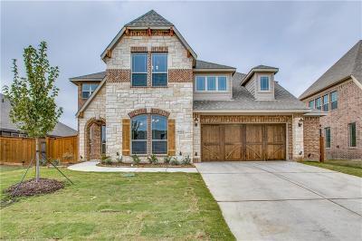 Grand Prairie Single Family Home For Sale: 7251 Brisa Drive