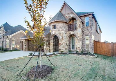 Grand Prairie Single Family Home For Sale: 7239 Brisa Drive