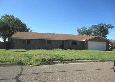 Single Family Home For Sale: 3401 Princeton Avenue