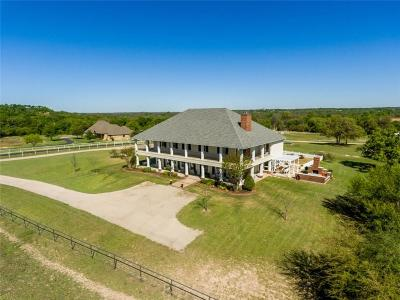 Aledo Single Family Home For Sale: 4201 Annetta Centerpoint Road