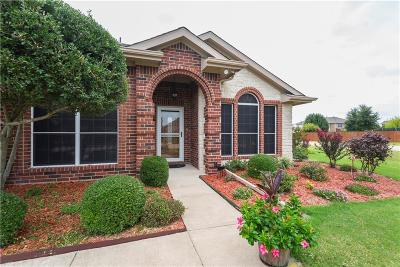 Rockwall Single Family Home For Sale: 3030 Stoney Hollow Lane