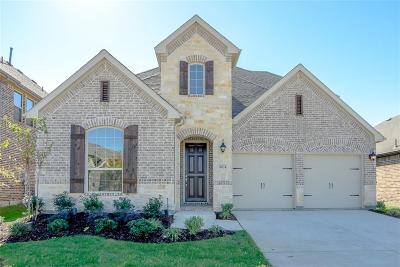 Prosper Single Family Home For Sale: 16024 Plum Court