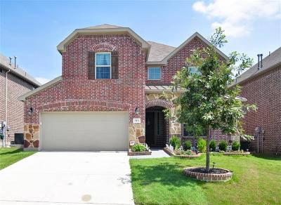 Little Elm Single Family Home For Sale: 513 Sundrop Drive
