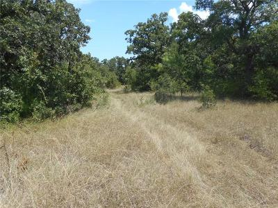 Mineral Wells TX Residential Lots & Land For Sale: $101,065