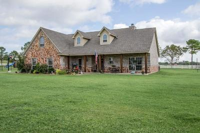 Weatherford Single Family Home For Sale: 100 Eagles Crest Lane