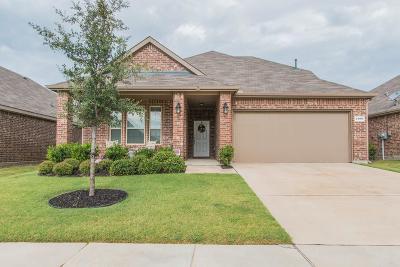 Little Elm Single Family Home For Sale: 1408 Christina Creek Drive