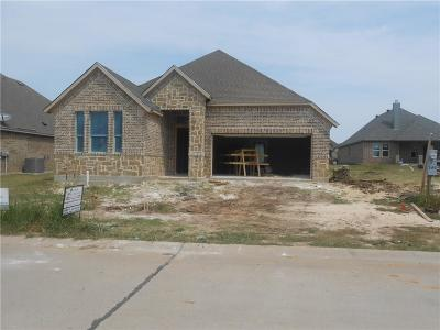 Wise County Single Family Home For Sale: 313 Spring Run Drive