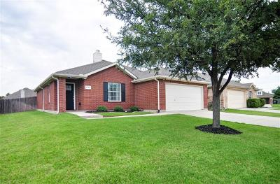 Little Elm Single Family Home For Sale: 2704 Dawn Spring Drive