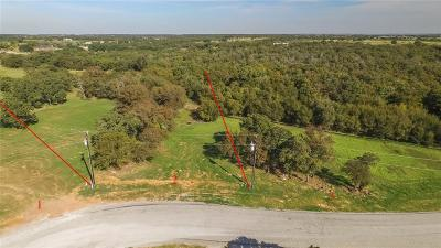 Parker County Residential Lots & Land For Sale: 3 Lazy Creek Crossing
